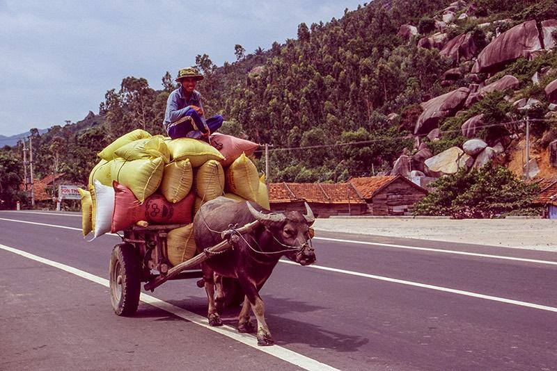 """""""Vietnam 2004"""", un recorregut fotogràfic"""